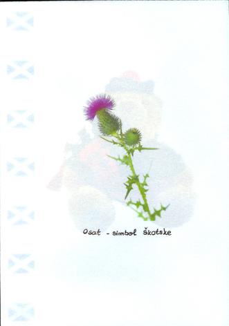 2006_20-skotska_zadnja_stran